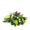 Creatief gestoken rouwstuk met Zantedeschia - Duoplant