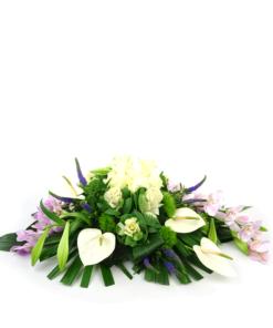 Duoplant - groep gestoken met Phaleanopsis (3)