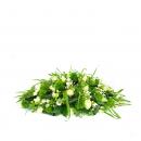 Duoplant-rouwstuk-ovaal-zonder-orchidee-(1)