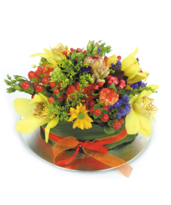 Duoplant - Bloementaart, een orgineel cadeau