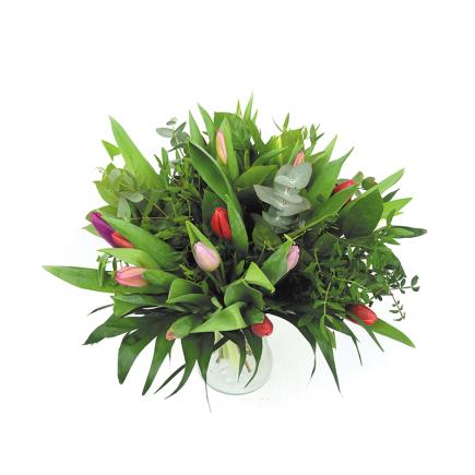 Duoplant - Tulpen mix