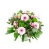 Duoplant – Geboorteboeket rose