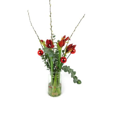Amaryllis met Pinus, kerstballen en katjes in vaas