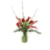 Duoplant - Amaryllis met Pinus, kerstballen, katjes en rode ilex in vaas. 5 mooie rode Amaryllis opgemaakt in een vaas met eucalyptus, rode kerstballen,katjes en Rode ilex