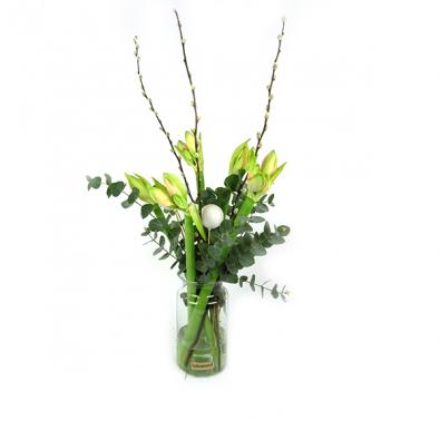 Duoplant - Witte Amaryllis met Pinus, kerstballen en katjes in vaas