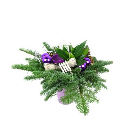 Duoplant - kerststuk Purple Christmas