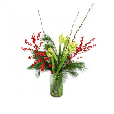 Duoplant - witte Amaryllis met Pinus, kerstballen, katjes en rode ilex in vaas